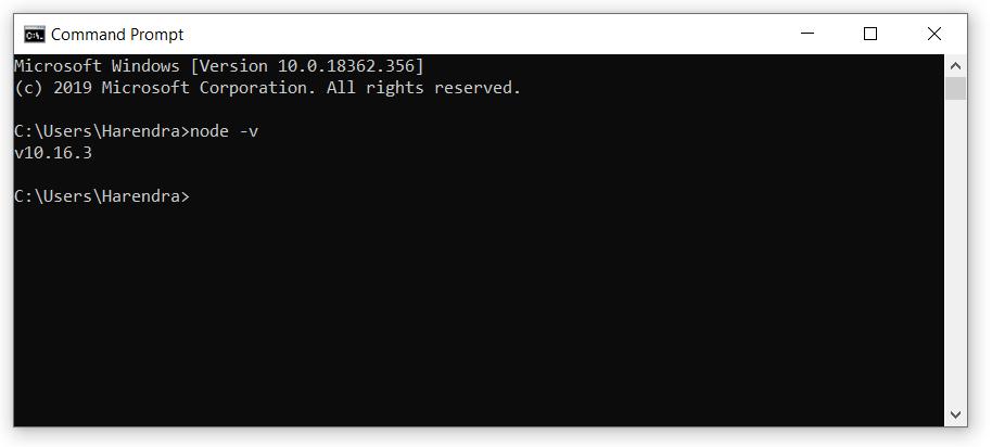 verify nodejs install